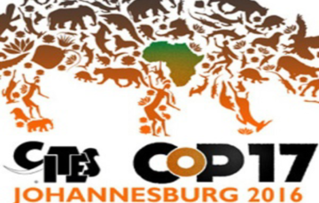 What can we expect from SA at CoP17