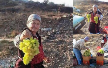 Palestinian Grapes Festival to be Held in Al-Khalil (Hebron)