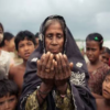 International rohingya muslim groups need help in Rakhine