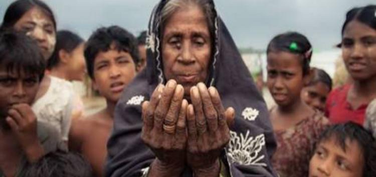 International rohingya muslim groups need help in Rakhine
