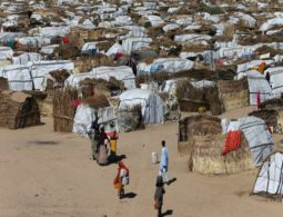 Nigeria grapples with starvation amid Boko Haram battle
