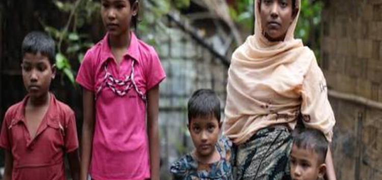 Muslim world must act to stop Rohingya genocide: Analyst