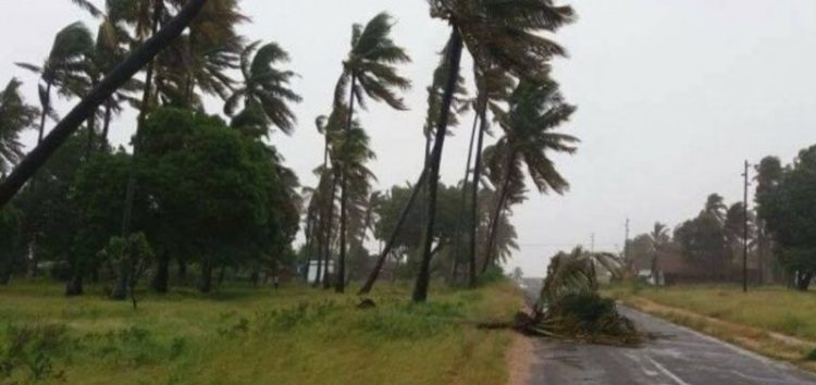 What to do if tropical cyclone Dineo reaches you
