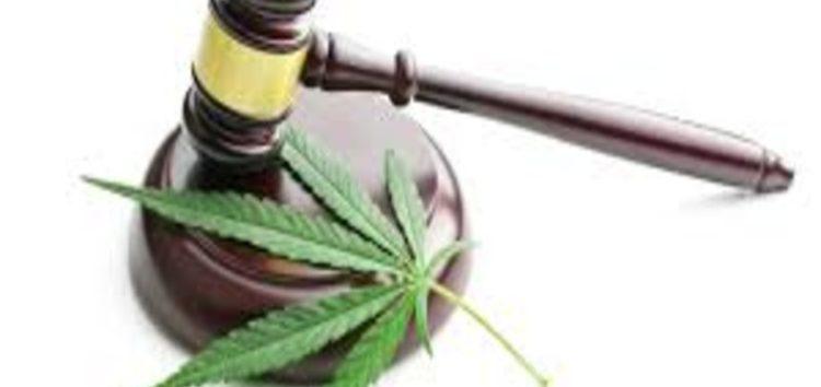 Medicinal cannabis gets the green light