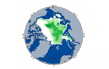 Arctic turns green as sea ice melts to record low levels