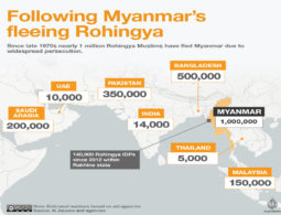 Myanmar Army Chief Rules Out Rohingya Citizenship