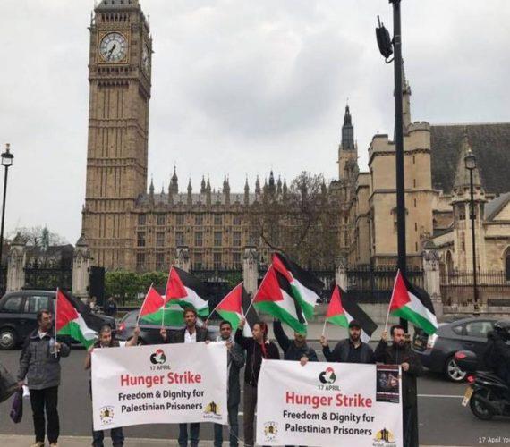 British man begins hunger strike in support of Palestinian prisoners
