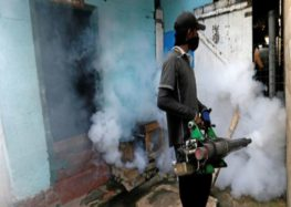 Hospitals overflow with patients as worst-ever dengue outbreak kills up to 300 in Sri Lanka