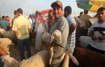 Siege leads Gaza's Qurbani market to crash