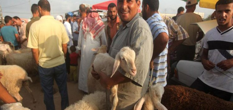 Siege leads Gaza's Qurbani market to crash