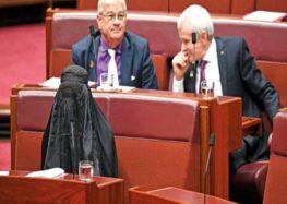 Aussie senate Pauline Hanson rebuked for ridiculing Muslims