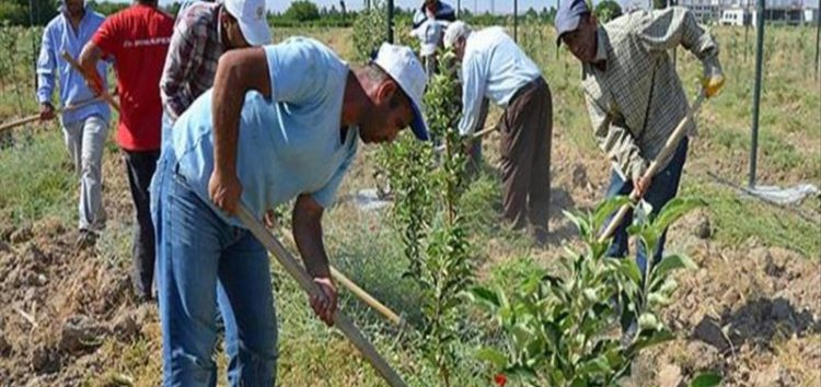 UN to teach agriculture to Syrian refugees in Turkey
