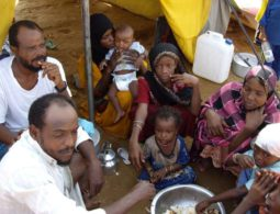 UNHCR: Nearly 2 million Yemenis internally displaced