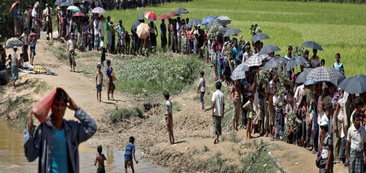 World Food Program seeks $75m in aid for Rohingya
