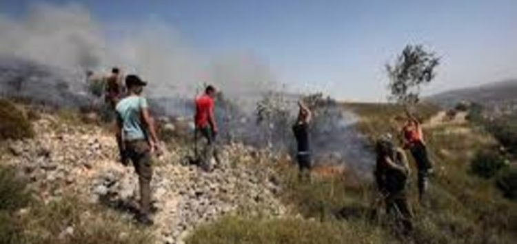 Israeli settlers continue to attack Palestinian lands in Nablus