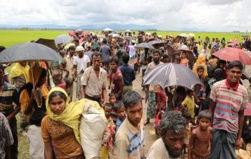 UN investigating genocide claims over Rohingya