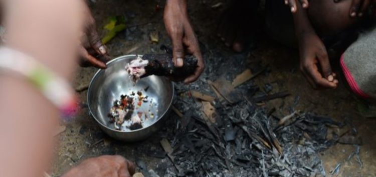 The daily struggles of the 'Rat Eaters' of India's Bihar