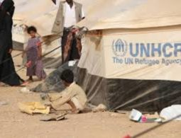Dengue fever and malaria adds to Yemen's woes