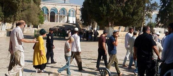 Masjid Al-Aqsa subjected to 'over 40 attacks a month' in 2017