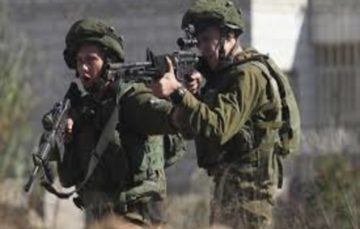 Israel army admits to using live fire on Palestinian civilians throwing stones