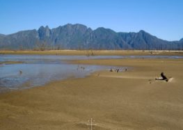 Less than 80 days before Cape Town's water runs out