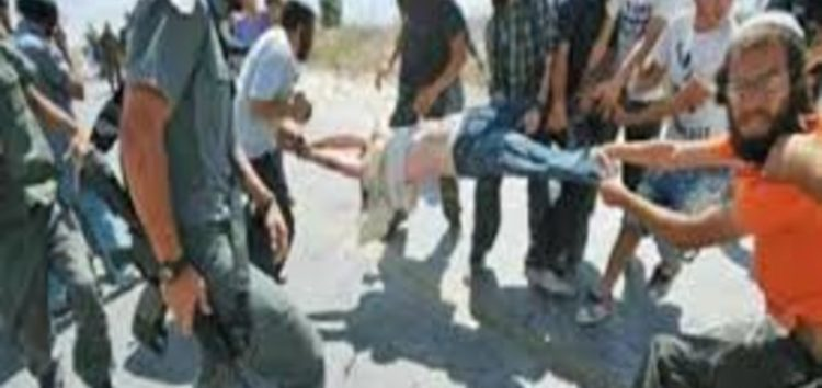 NGO: Israeli attacks on Palestinians 'go unpunished'