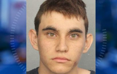 Florida school shooter: 'I'm going to be a professional school shooter'