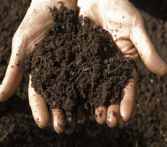 New class of antibiotic unearthed from the soil