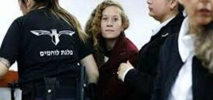 Teen activist Ahed Tamimi should have been shot at least in the knee, says Israeli deputy