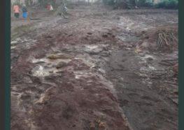 Kenya dam disaster leaves 41 dead,scores missing