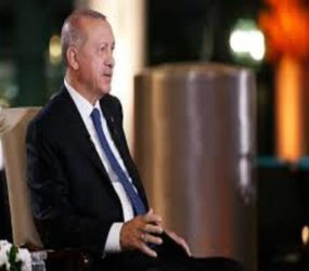 Erdogan sheds light on Turkey's new presidential system