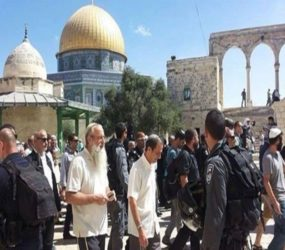 Mufti slams Jewish settlers' storming Al-Aqsa compound