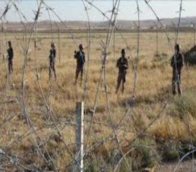 Assad forces deploy along Syria's border with Jordan