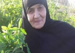 Egyptian grandmother returns home after drug smuggling ordeal