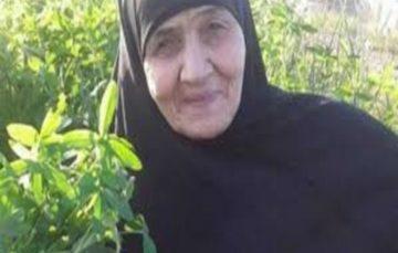 Egyptian grandmother returns home after drug smuggling ordeal