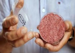Lab-grown meat could be in restaurants by 2021