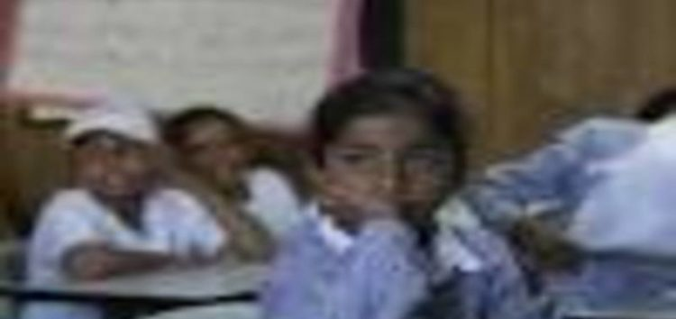 Palestinian pupils scrap school holidays to save village