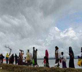 IOM: Rohingya refugees face triple threat