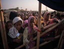Rohingya refugees want to return to Myanmar as citizens