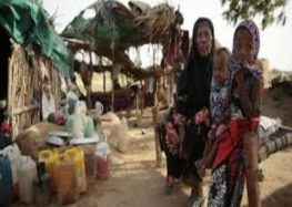 UN: 35,000 Yemeni households displaced in Al-Hudaydah