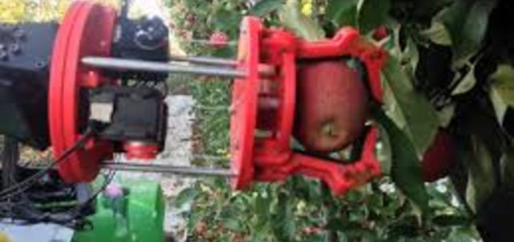 Fruit-picking robot designed to replace seasonal migrant workers on British farms will be 'ready by Brexit'