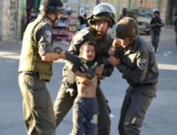 Israel arrested 484 Palestinians in August