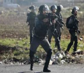 Israeli forces fatally shoot Palestinian teenager in Gaza