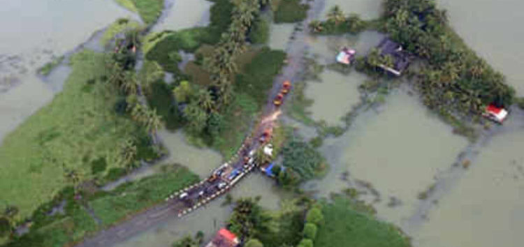 Flood-hit Kerala battles rat fever outbreak