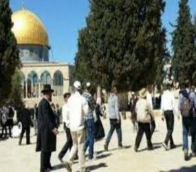 Report: 101 Israeli violations against Palestinian holy sites