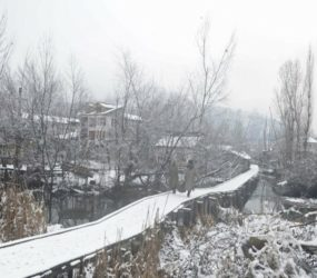 Avalanches kill 1, trap 11 people under snow in Kashmir