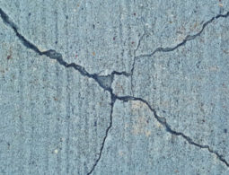 3.8 magnitude #tremor leaves Joburg shook