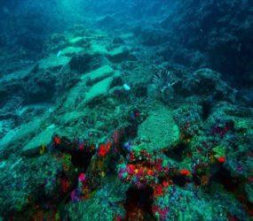Turkey: 3,600-year-old shipwreck found in Turkey's Mediterranean coast