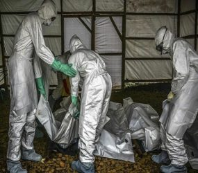 Ebola death toll in DR Congo rises to 979
