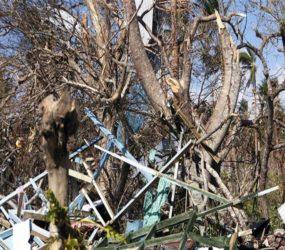 Severe Tropical Cyclone Harold pounds Vanuatu island chain
